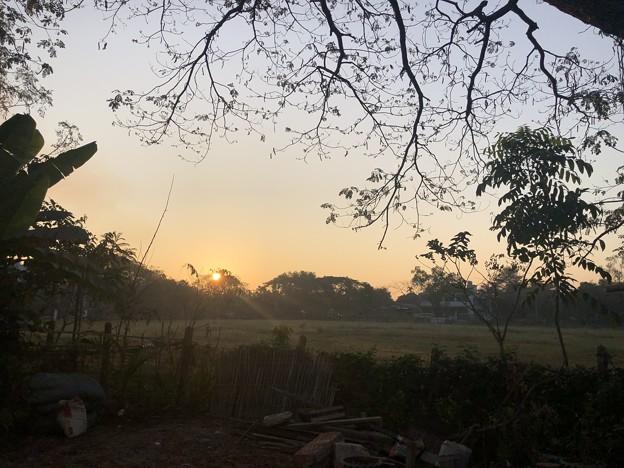 クーデター二日目のヤンゴンの片隅の朝 (20)