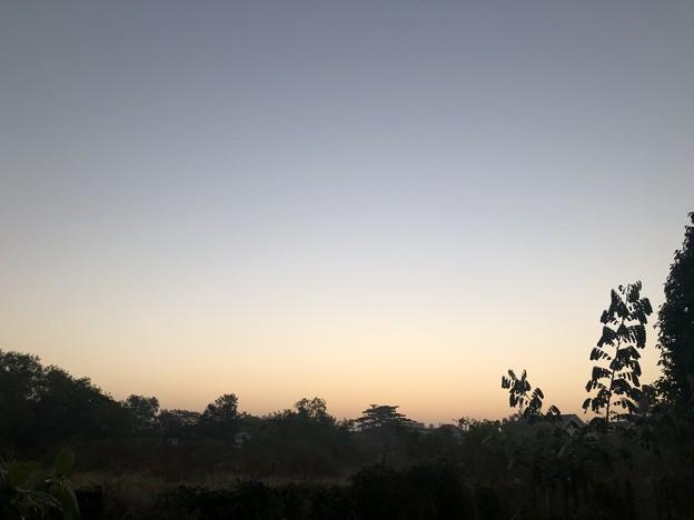 クーデター二日目のヤンゴンの片隅の朝 (17)