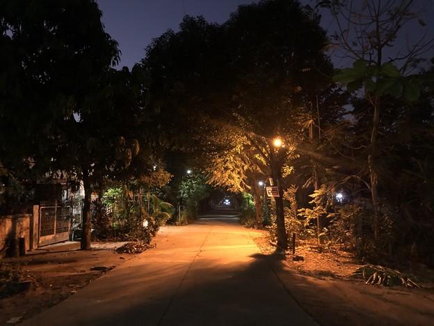 クーデター二日目のヤンゴンの片隅の朝 (1)