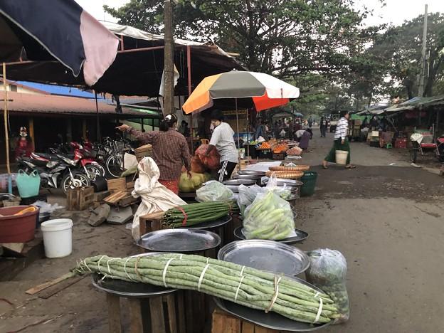 クーデター二日目のヤンゴンの片隅の朝 (8)