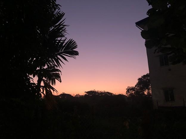 クーデター二日目のヤンゴンの片隅の朝 (3)