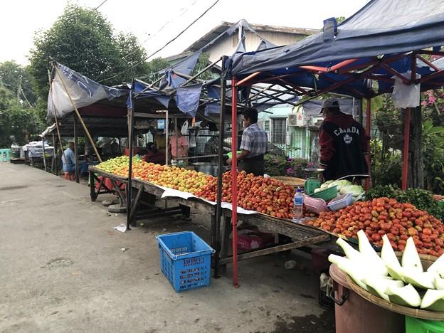 2月3日のヤンゴンの朝 (11)