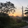 2月3日のヤンゴンの朝 (14)
