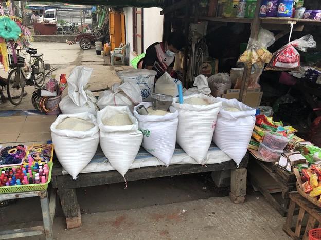 2月3日のヤンゴンの朝 (9)