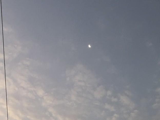 土曜日の朝のヤンゴン2月6日 (1)