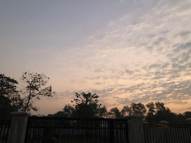土曜日の朝のヤンゴン2月6日 (22)