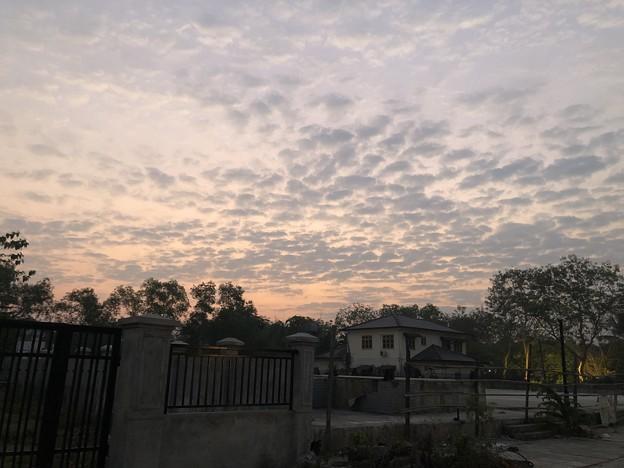 土曜日の朝のヤンゴン2月6日 (21)