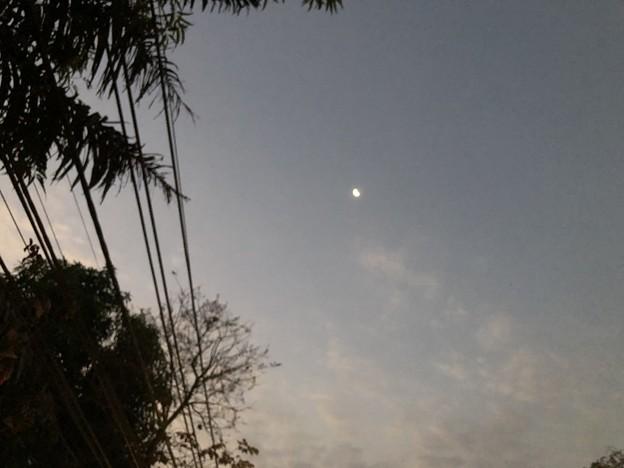 土曜日の朝のヤンゴン2月6日 (20)
