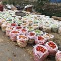 土曜日の朝のヤンゴン2月6日 (10)