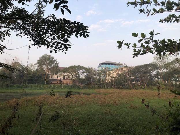 土曜日の朝のヤンゴン2月6日 (19)