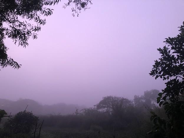 霧深い2月12日のヤンゴンの朝 (5)
