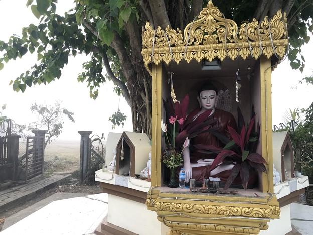 霧深い2月12日のヤンゴンの朝 (14)