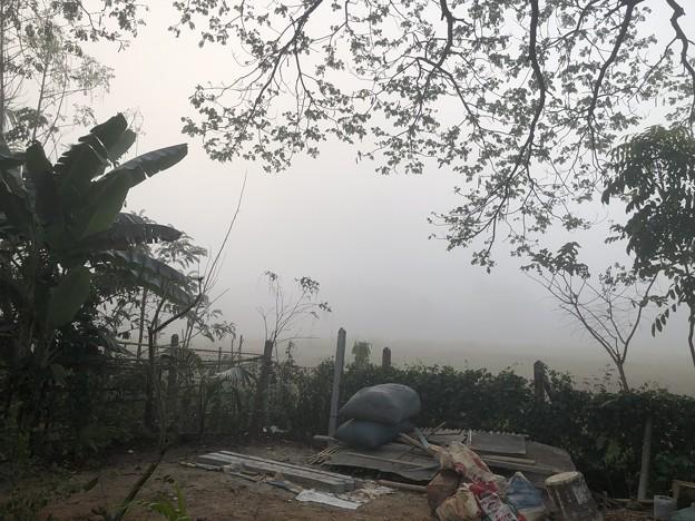 霧深い2月12日のヤンゴンの朝 (15)
