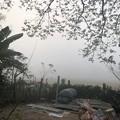 Photos: 霧深い2月12日のヤンゴンの朝 (15)