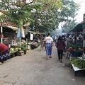 Photos: 土曜日のヤンゴン2月13日 (15)