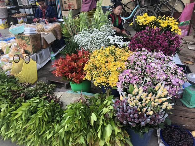 ヤンゴン 日曜日の朝 2月14日 (7)
