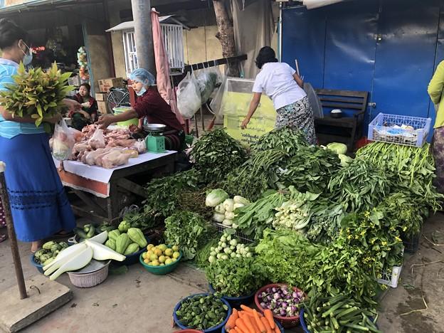 ヤンゴン 日曜日の朝 2月14日 (6)