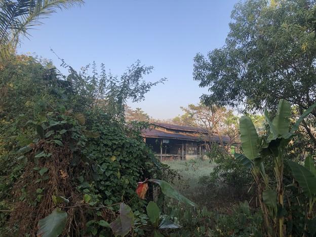 ヤンゴン 日曜日の朝 2月14日 (3)