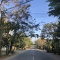 Photos: ヤンゴン 日曜日の朝 2月14日 (21)