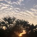 2月19日のヤンゴンの小区の朝 (3)