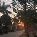 Photos: 2月19日のヤンゴンの小区の朝 (1)