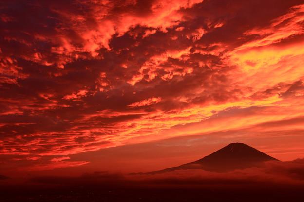 写真: 夕景富士