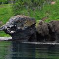 写真: 奇石 獅子岩