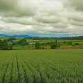 写真: 三愛の丘