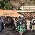Photos: 初めての上野動物園
