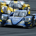 Photos: Oreca 07 - Gibson-38_1