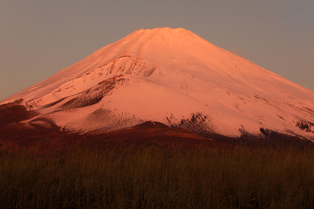 Photos: 紅富士の朝