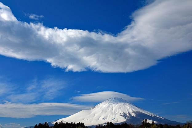 Photos: 青空に浮かぶ
