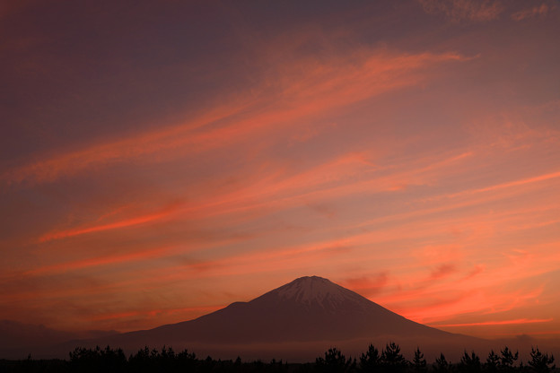 Photos: 絹雲を追って