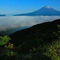 Photos: 雲海の朝