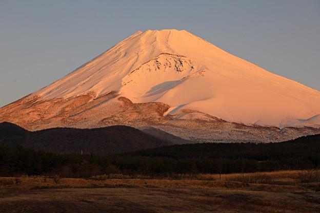 冬景色の朝