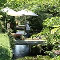 Photos: 地蔵川
