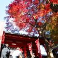 Photos: 毘沙門堂門跡