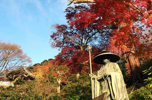 Photos: 善峯寺
