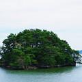写真: 松島#1
