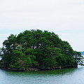 Photos: 松島#1