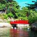 写真: 松島_渡月橋