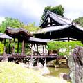 Photos: 高台寺_開山堂と観月台