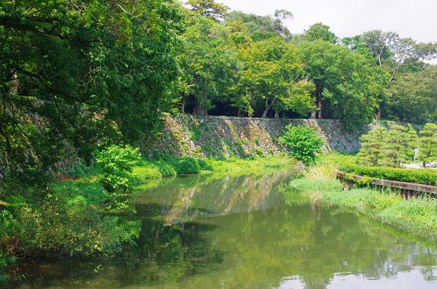 Photos: 彦根城_黒御門石垣