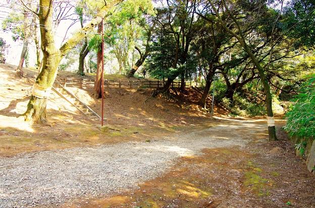 陸側の土塁と堀跡_北側