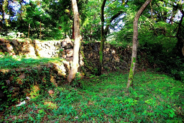 北曲輪石垣