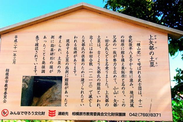 Photos: 矢部城_案内板