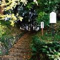 Photos: 高幡城址1