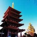 Photos: 高幡不動尊の五重塔