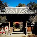 Photos: 旧城寺_山門