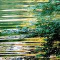 写真: 緑道公園の川
